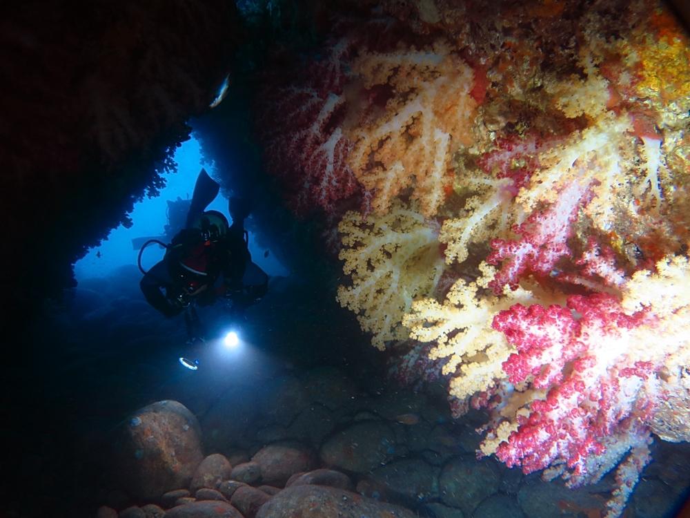 24アーチ 雲見 水中洞窟 地形